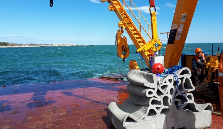 Vicat's concrete 3D ink buoys up marine biodiversity